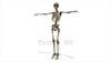 映像CG 人体模型120430-008