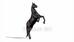 CG  Horse120324-001