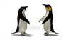 CG  Penguin120422-001