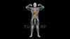 映像CG 人体模型120429-005