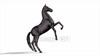 CG Horse120324-003