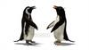 映像CG ペンギン Penguin120422-003