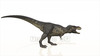 Image CG dinosaurs t-Rex
