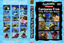 【レンタル】Fantasies From The Florida Keys