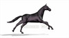 CG Horse120324-008