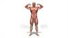 CG Muscle120427-009