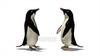 CG  Penguin120421-004
