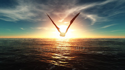 CG  Eagle120308-001