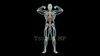 映像CG 人体模型120429-003